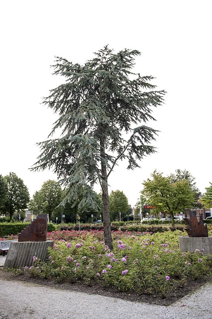 21b Kunstwerk Vondelpark, Carel Visser